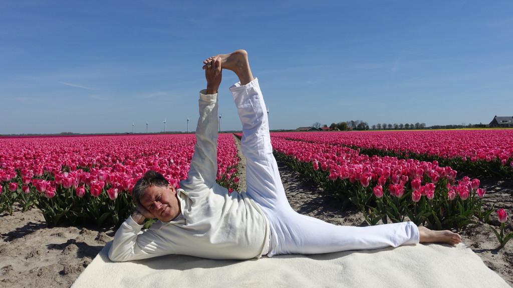 yoga wat is het