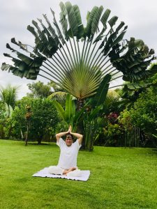 yogi in crisis tijd